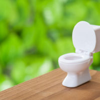 トイレは家族の健康運に深くかかわる場所です。